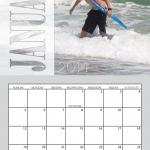 Transparent 11x17 Simplex Calendar for 2014